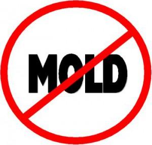 Mold gone