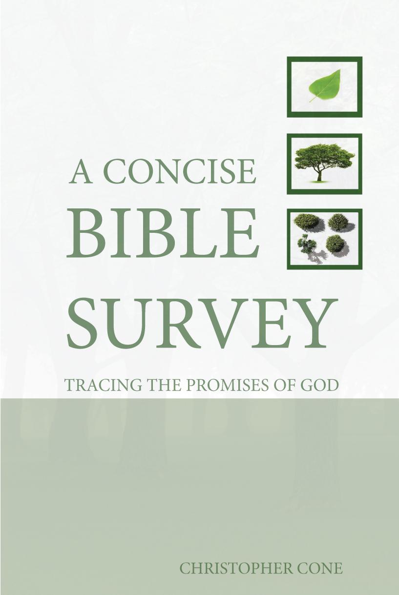 Concise Bible Survey – Print