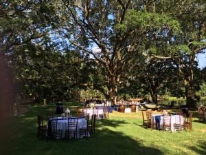 live-oak-plantation-2