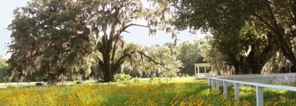 Wedding Venue in Gadsden County: White Dog Plantation, Coca Cola Avenue, Havana, FL
