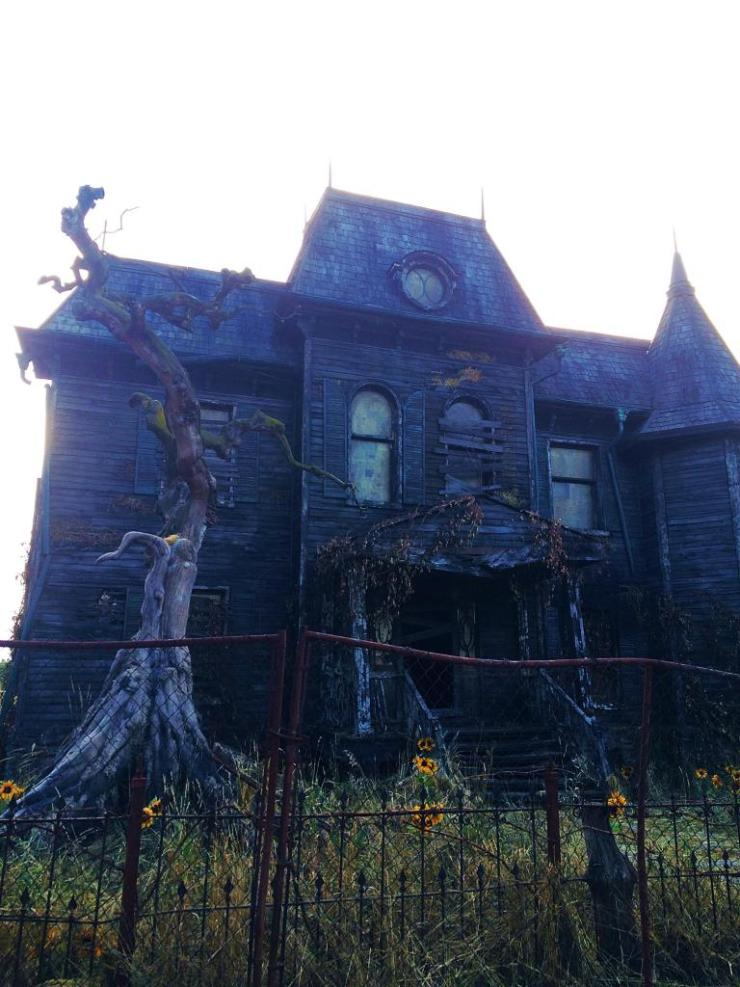 It House - Stephen King's It - A Haunting Look at 29 Neibolt Street