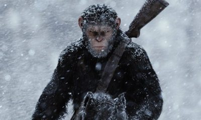 APES WAR s - War for the Planet of the Apes (2017)