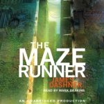 Maze - The Best Dystopian Novels that Could Predict our Future World