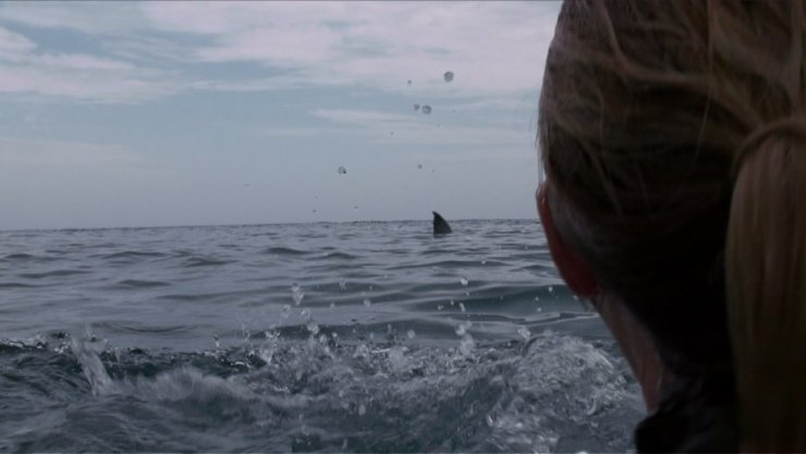 cage dive 1 - Open Water 3: Cage Dive Trailer Surfaces