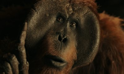 maurice2 - Exclusive: Karin Konoval Discusses Her Role as Maurice in the Planet of the Apes Trilogy