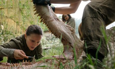 annihilation s - Annihilation - New Trailer and First Stills!