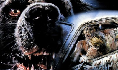 cujo 1200 1200 675 675 crop 000000 - Snoochie-Poochies? Kevin Smith Was Asked to Remake Stephen King's CUJO