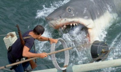 jawsbanner1200x627 - Be Afraid to Swim Again With These Exclusive JAWS: THE RIDE Photos