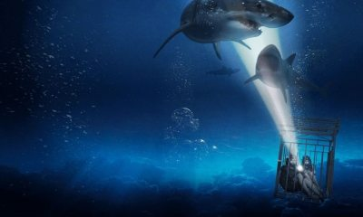 47 Meters Down - Sequel to 47 METERS DOWN Gets Official Name, Cast Updates, & Release Date