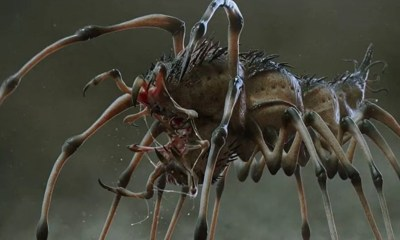 "Preda pede - ""Preda-pede"" is the Most Terrifying Hybrid We Didn't See in Shane Black's THE PREDATOR"