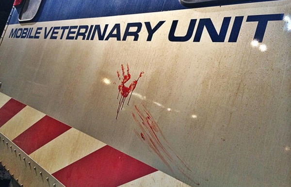 jurassic world bloody - New Jurassic World Image Shows Off the Leftovers