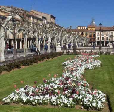 Primavera en Plaza Cervantes - Ursula Cargill Garcia Zimmermann