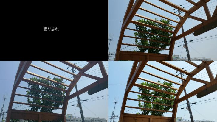 カメラ比較4