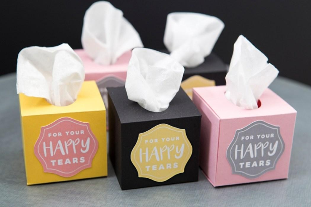 ST-DIY-Mini-Wedding-Tissue-Boxes_0003