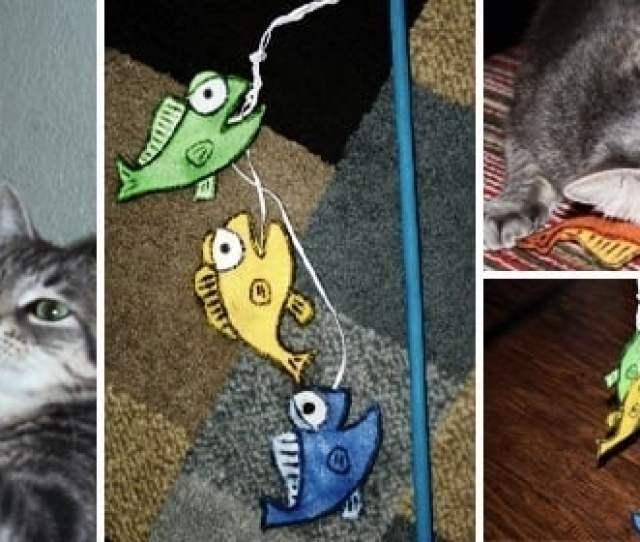 Its Fishy Cat Crack Stick Toy Www Dreamalittlebigger Com