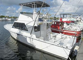 Sport Fishing Deep Sea Charter Boat Key West