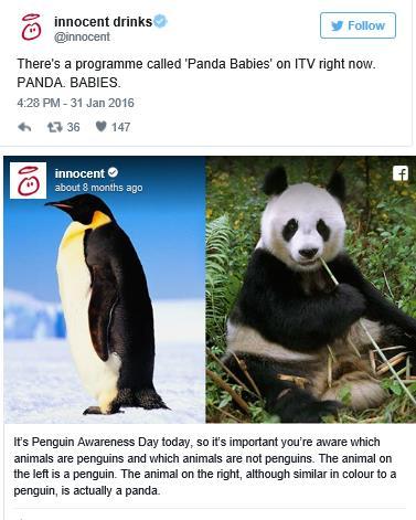 innocent-drinks-penguin-day