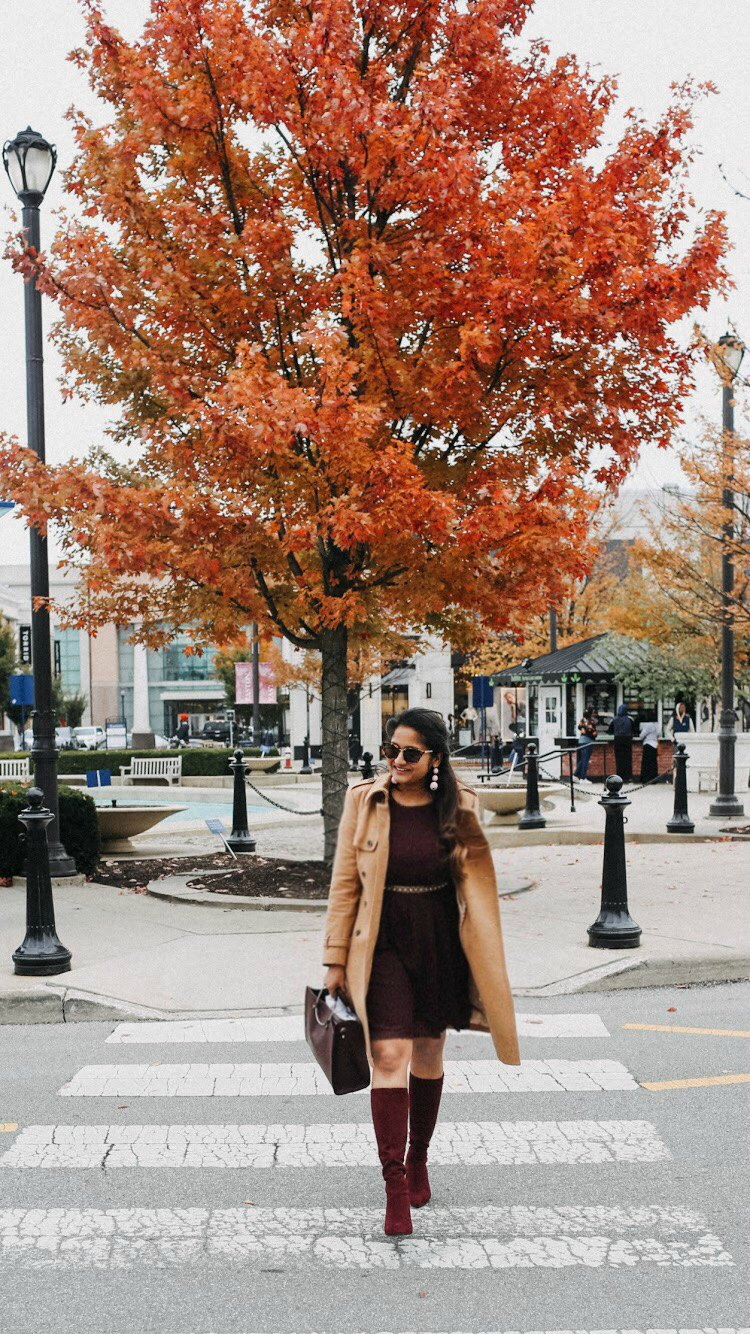 Lifestyle Blogger Surekha of dreaming loud wearing LC Lauren Conrad Swiss Dot Fit & Flare Dress