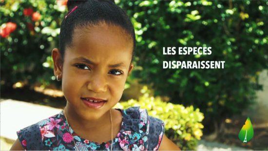 Une_Spot-Caraibes-Climate-2015