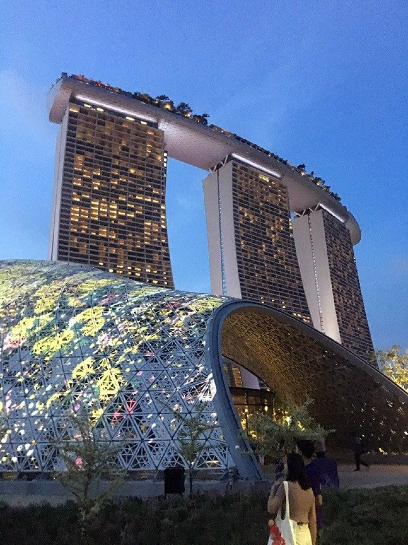 Singapore Hotel form Gardens by the Bay
