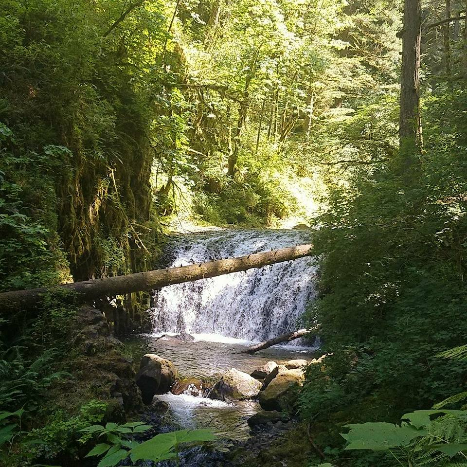 Picture of a waterfall taken while Morgan was on a hike after returning to the United States