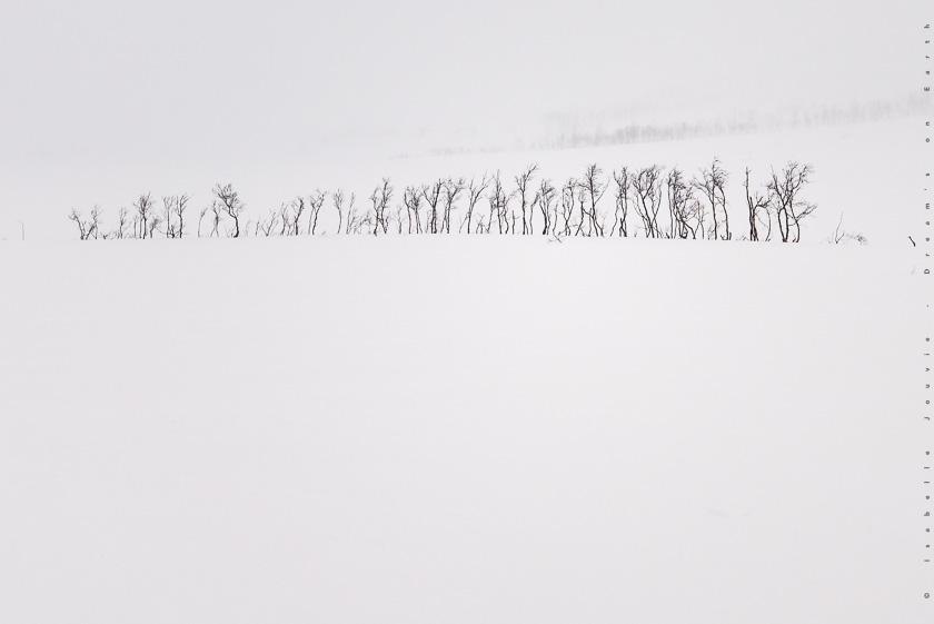 hiver Norvège neige