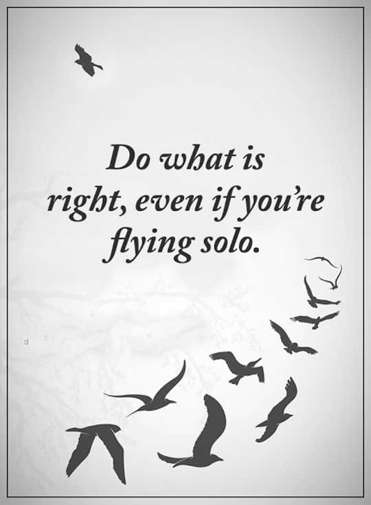 Image of: Lose Sight Best Inspirational Quotes Life Sayings Do What Is Right Flying Solo Dreams Quote Best Inspirational Quotes Life Sayings Do What Is Right Flying