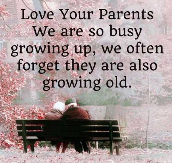 Most Heart Touching Fathers Day Quotes Love Your Parents Growing Old