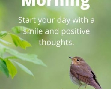 Good Morning Quotes Good Morning Start Your Day Smile And Positive Thoughts