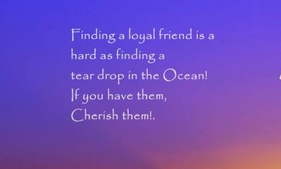 23 Best Friendship Poems And Sayings 5