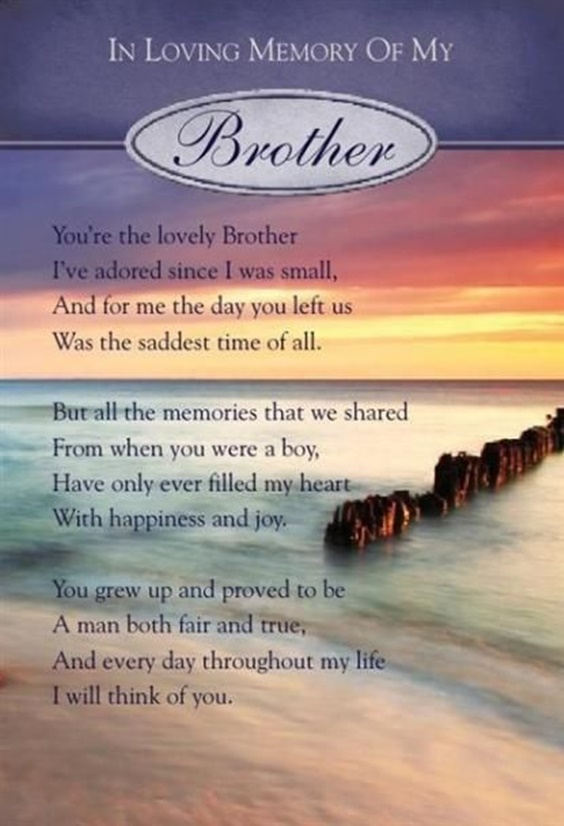 The 100 Greatest Brother Quotes And Sibling Sayings 4d73b03409c48c5496b3e8d1459a457e 74