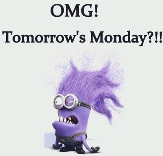 87 Funny Minion Quotes Of The Week And Funny Sayings 6