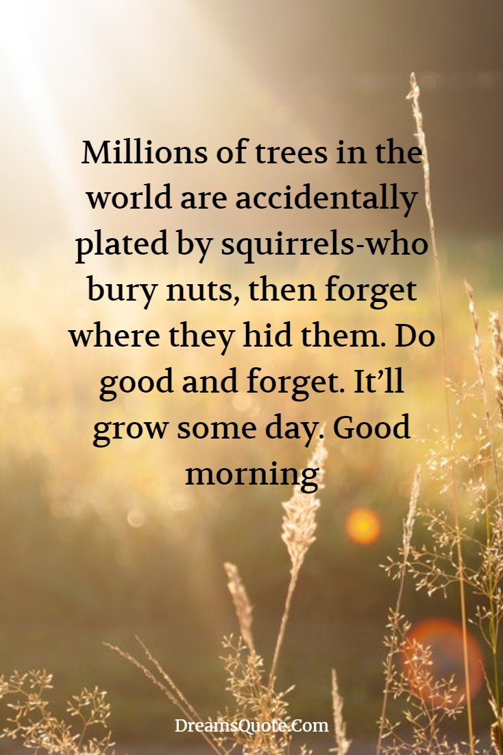 50 Great Wisdom Good Morning Wednesday Quotes Good Quotes