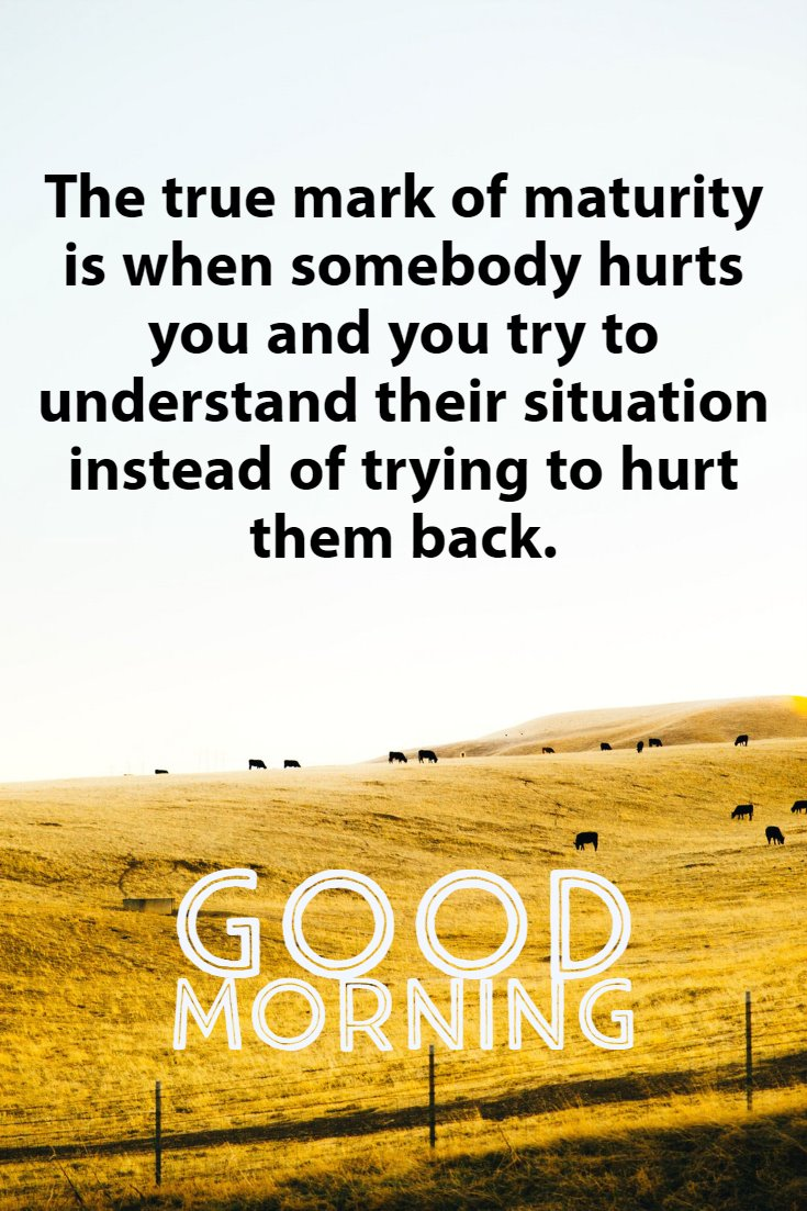 137 Good Morning Quotes And Images Positive Words For Good Morning 28