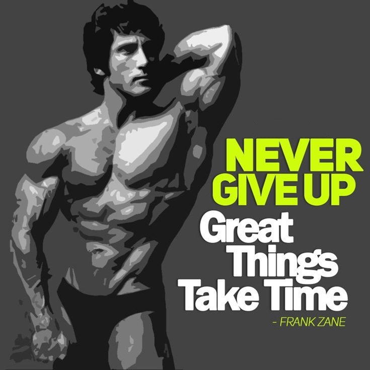 55 Never Give Up Quotes That Will Inspire You Deeply 8