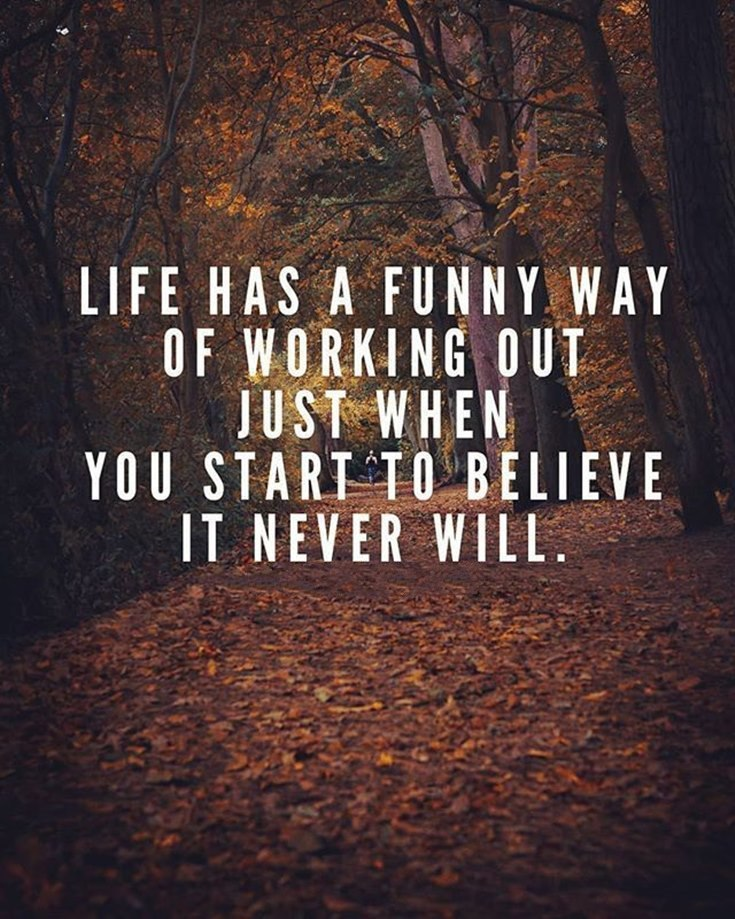 59 Funny Inspirational Quotes Life You're Going To Love 18