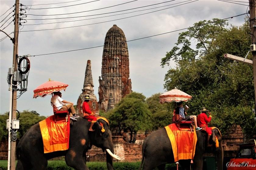 Elephants & temples
