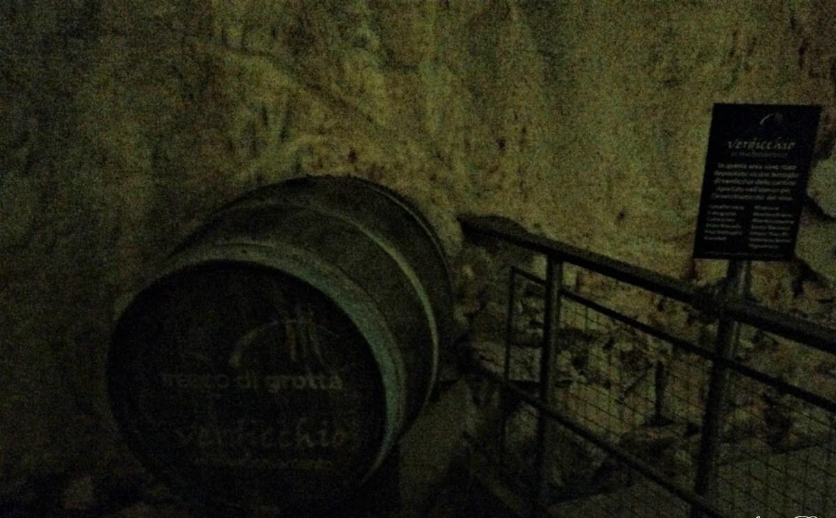 Verdicchio fresco di grotta, Curiosità di Vino