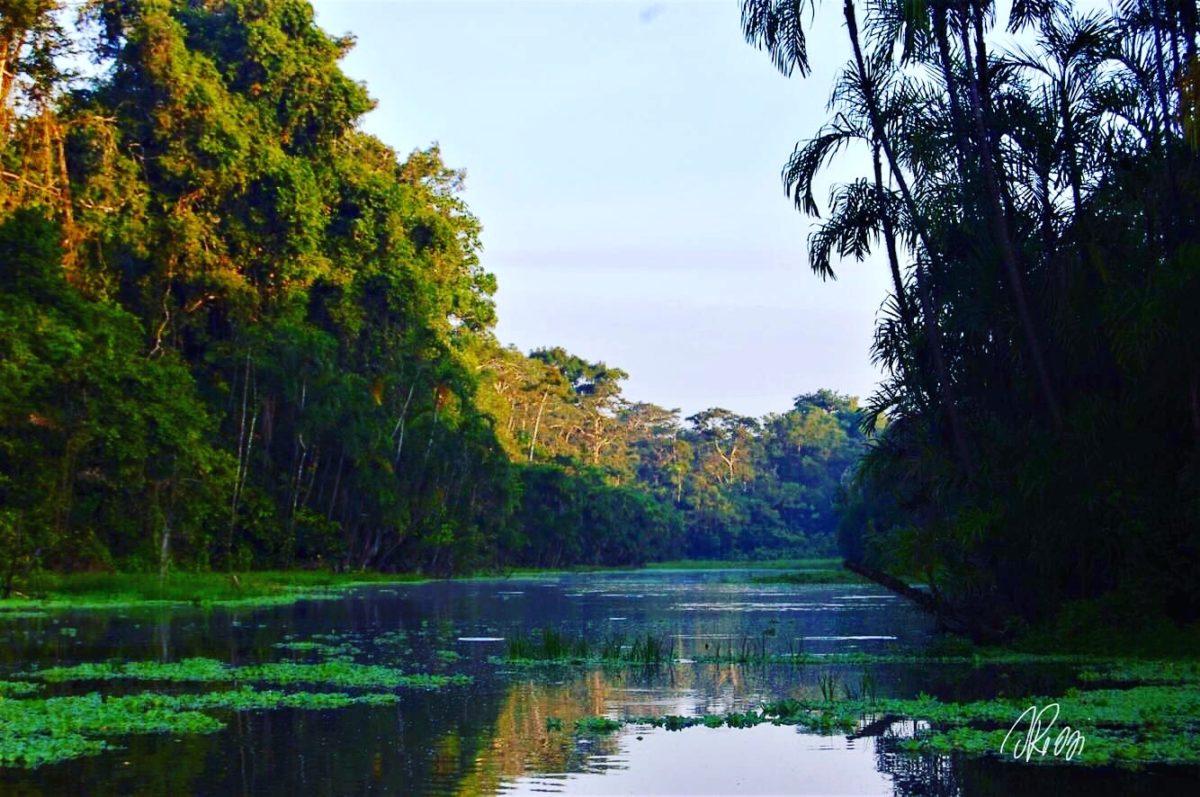 """""""Perdida en Amazonia"""", nel cuore di Madre Terra"""