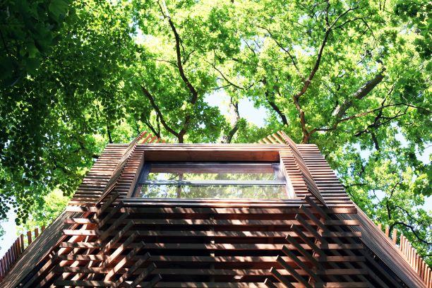 ORIGIN Tree House 16