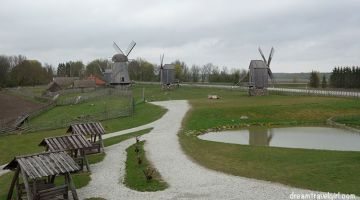 Saaremaa, an island full of surprises
