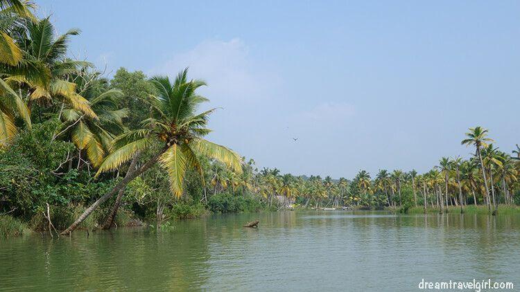 India_Kerala_Poovar_backwaters13