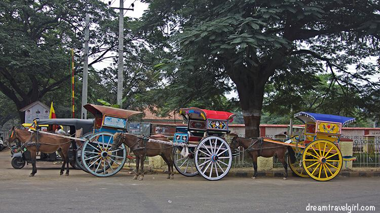 Before the rickshaws arrived, people used to move around by horse-taxi or bicycle