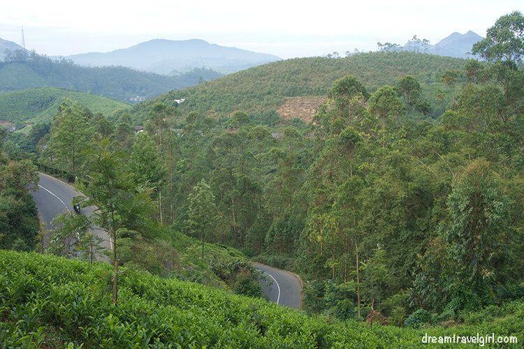 India_Munnar02_road