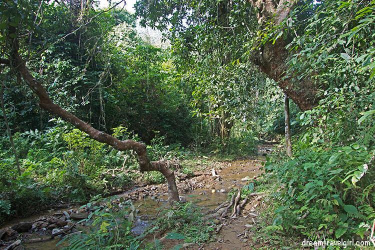 Laos_Huay-Bo_jungle-river