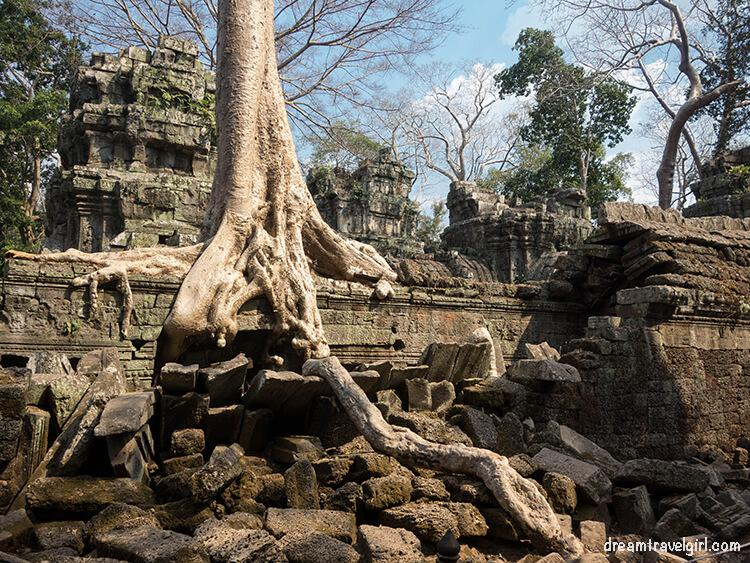 Ta Phrom, one of the Angkor temples