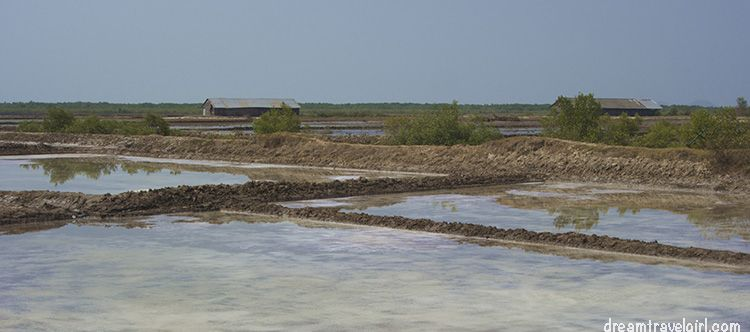 Cambodia_Kampot_salt-fields06