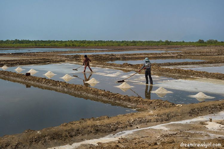 Cambodia_Kampot_salt-fields08