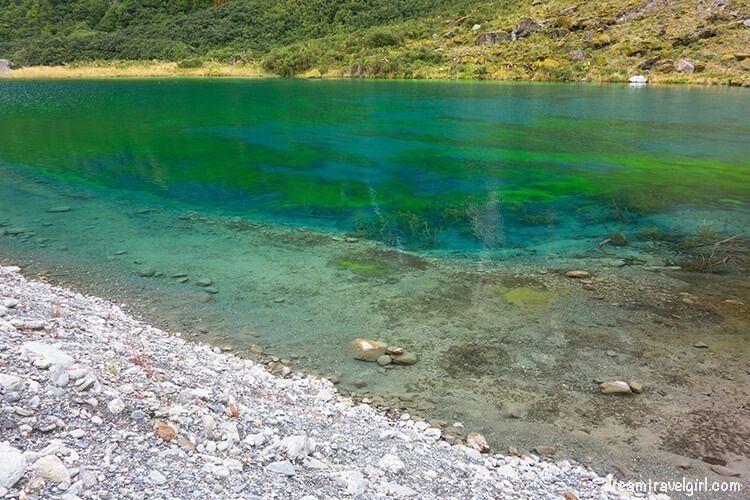 Small lake near Fox glacier