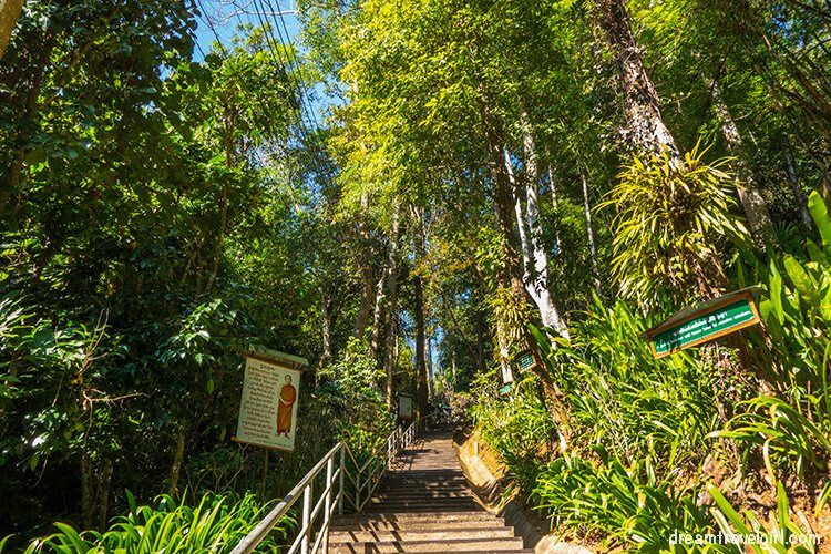 The steps to go up to Wat Tham Pha Plong